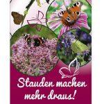 Tischaufsteller Schmetterlingsstauden